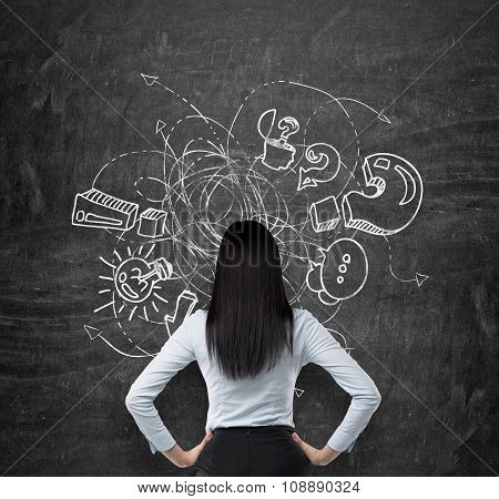 Rear View Of Brunette Who Is Looking At The Black Chalkboard With Drawn Sketch Of Business Icons, Ex