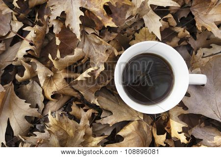 Autumn Leaves With Cup Of Coffee.