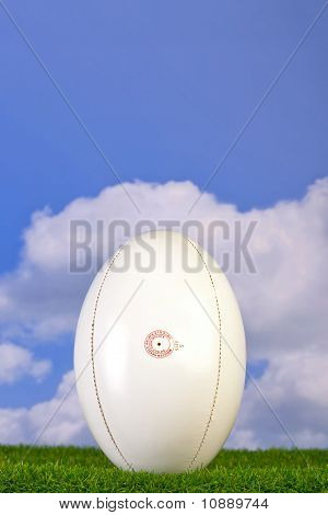 Rugby Ball Tee'd Up On Grass