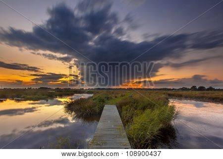 Long Exposure Footbridge In Wetland