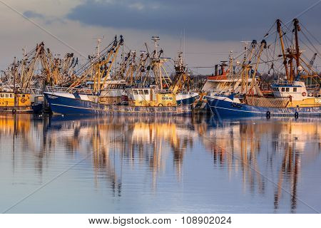 Dutch Fishery In Lauwersoog Harbor