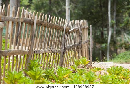 Wooden fence on a green garden under the sunlight