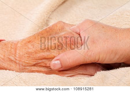Elderly Care