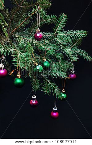 Christmas ornaments and pine branches on black background. Purple and green christmas balls on green
