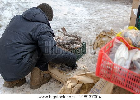 Fishmonger In Russia