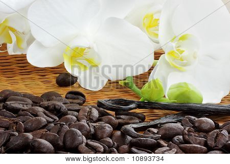 Gourmet Coffee Ingredients