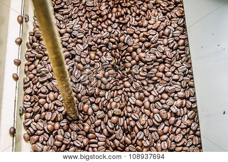 The freshly roasted coffee beans from a coffee roaster.