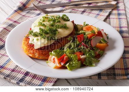 Italian Chicken Parmigiana And Fresh Vegetable Salad. Horizontal