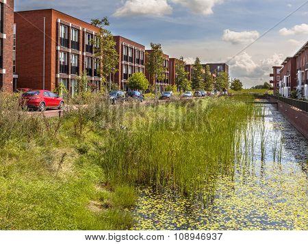Eco Friendly Urban Street