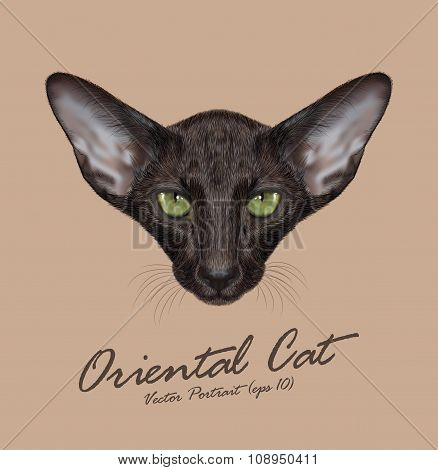 Vector Illustrated Portrait of Black Oriental Shorthair Cat.