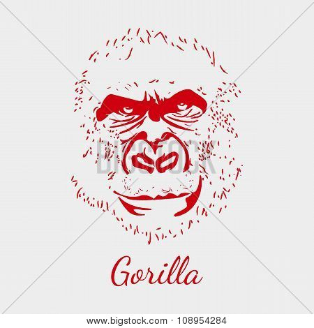 Vector gorilla. Red beckground. Animal postcard.