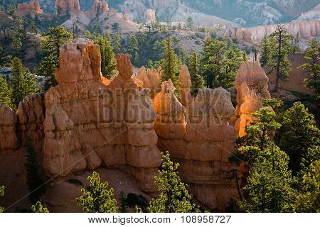 Bryce Canyon Hoodoos In The First Rays Of Sun