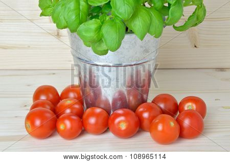 Tin Pot With Fresh Basil And Cherry Tomatoes