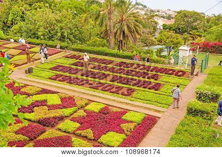 Botanical Garden Jardim Botanico, Madeira