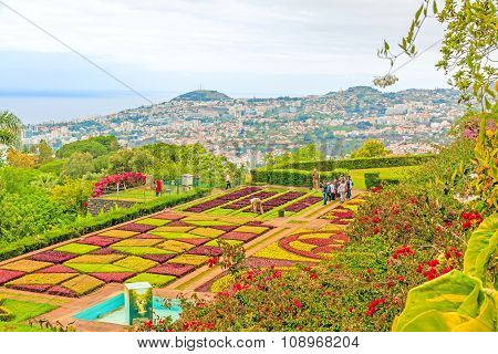 Botanical Garden Jardim Botanico, Funchal, Madeira