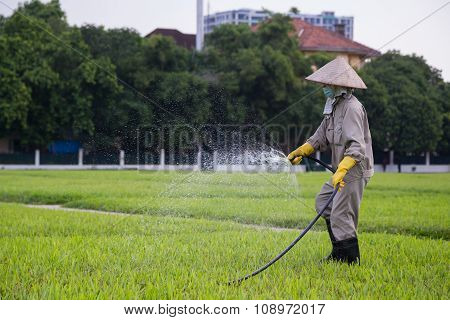 Hanoi, Vietnam - Circa August 2015: Worker Water Grass Outside Ho Chi Minh Mausoleum In  Hanoi