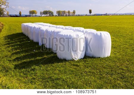 Bale Of Straw Packed In White Plastic Foil To Protect Against Bad Weather