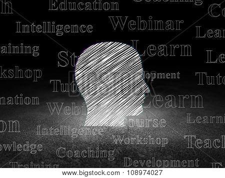 Education concept: Head in grunge dark room
