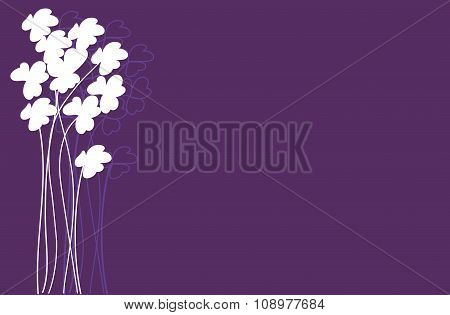 White Clover Flowers On Purple Background
