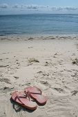 picture of bribie  - a pair of pink thongs on the beach in vertical format - JPG