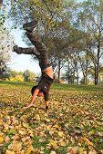Freestyle Boy In Fall