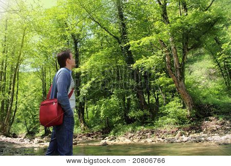 Relaxing Man In Sunny Summer Forest