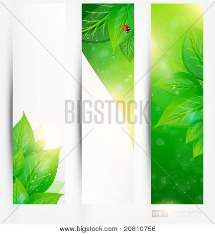 Set of bio concept design eco friendly banners for summer design