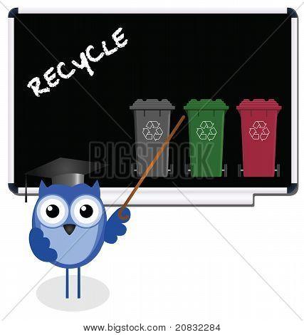 Owl blackboard recycle