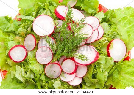 Chopped Lettuce And Radishes