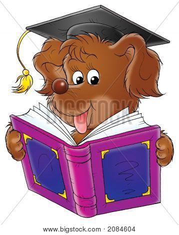 Schooldog