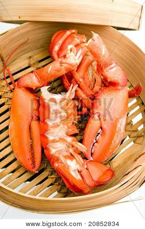 seafood lobster