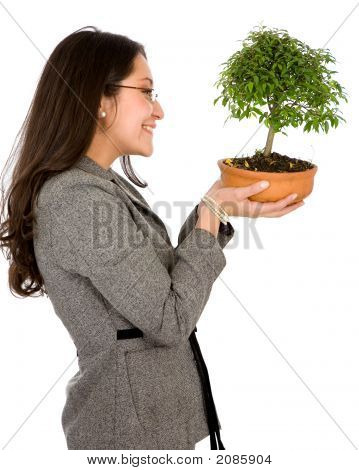 Business Woman Holding A Bonsai