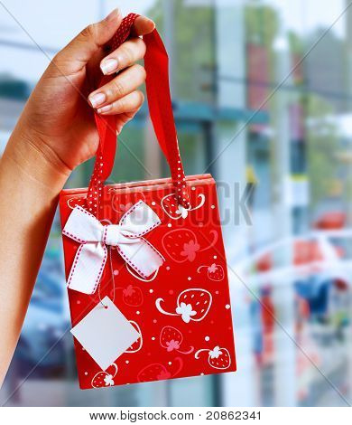 A Gift Wrapped Bag Being Held Up