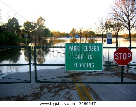 Flood In The Park