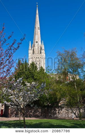 Norwich cathedral in spring