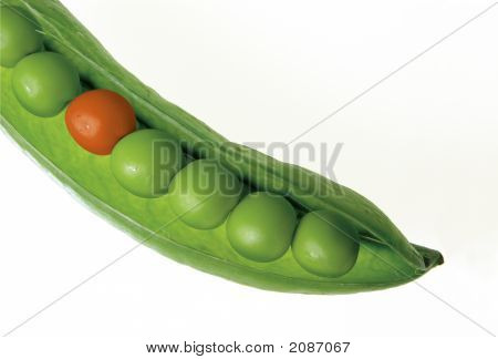 Pea Pod With Orange Pea