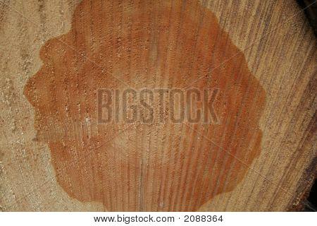 Lumber In Crosscut
