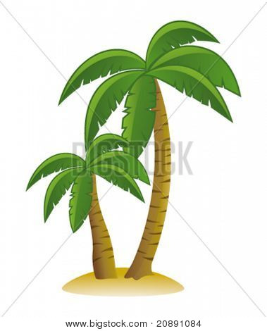Palm trees. Vector