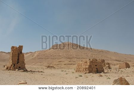 Palmyra Is An Oasis In Desert