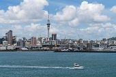 Auckland City Skyline, New Zealand poster