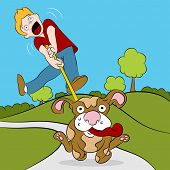 picture of dog-walker  - An image of a man being pulled while trying to walk his dog - JPG