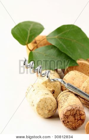 Cork from wine and a corkscrew on white background