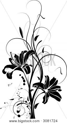 Floral Abstraction In Black And White Colours