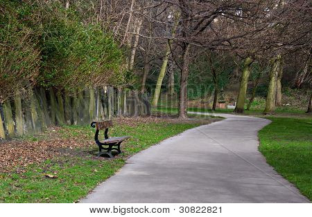 Lone Bench In Cemetery