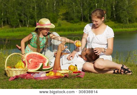 Family Picnic In Park
