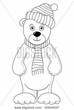 Teddy in cap and scarf, contours