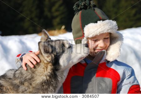 Boy With His Husky Dog
