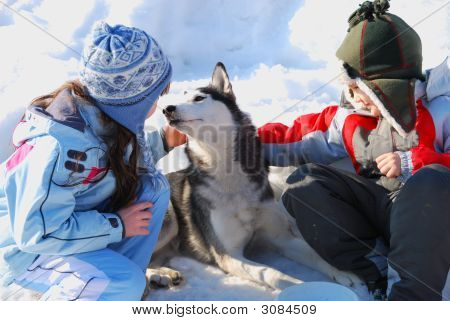 Children And Husky Dog
