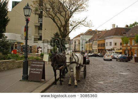 Horse Drawn Carriages On The Hungarian Streets