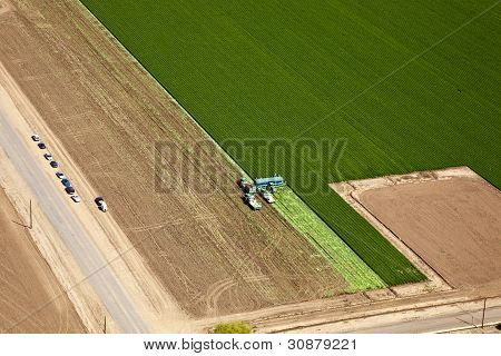 Agriculture Aerial